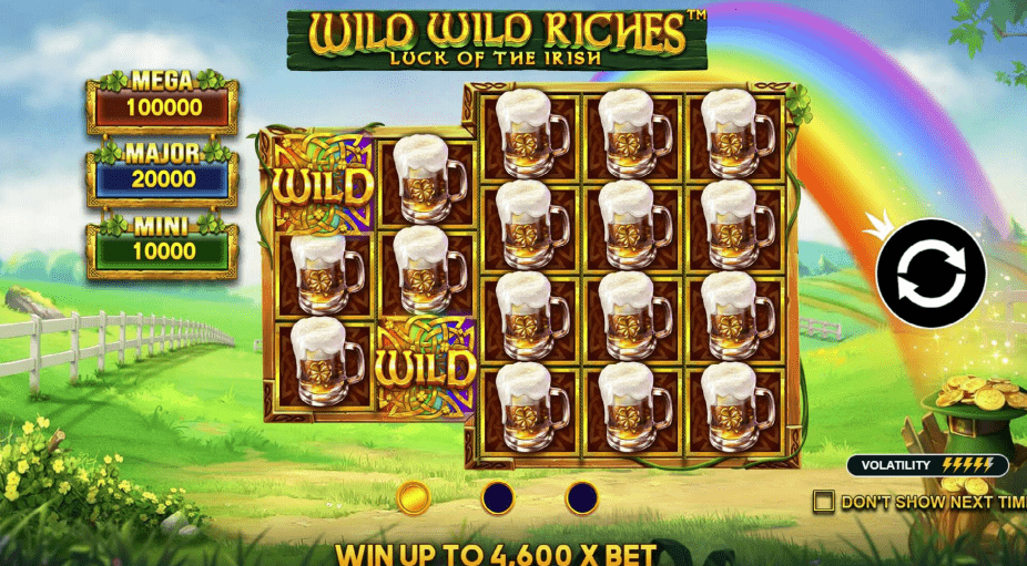 Wild Wild Riches Video Slot